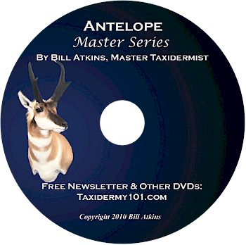 Antelope Taxidermy DVD