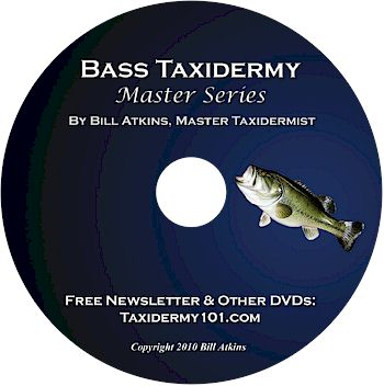 Bass Taxidermy DVD