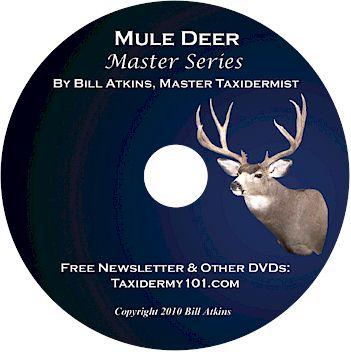 Mule Deer Taxidermy DVD