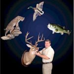 4-DVD Set – Deer, Bass, Duck, Bobcat