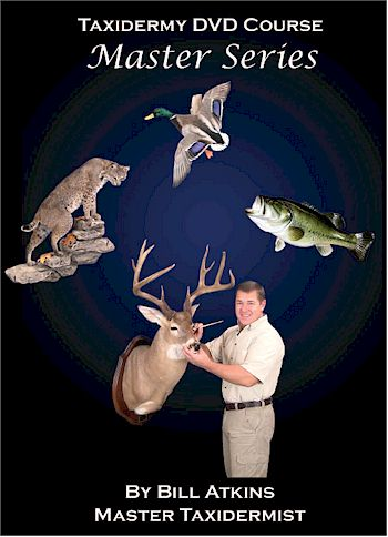 4-DVD Set - Deer, Bass, Duck, Bobcat