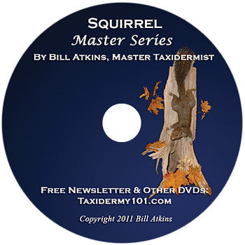 Squirrel Taxidermy DVD