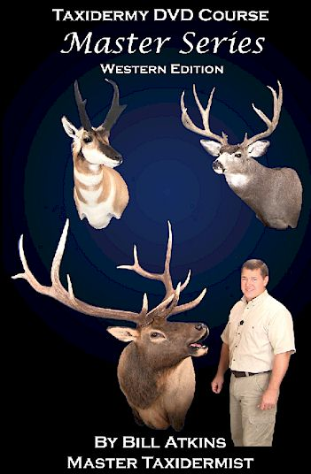 4-DVD Western Set - Mule Deer, Antelope, Elk, Tanning