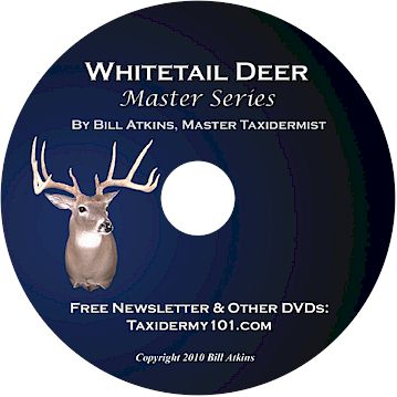 Whitetail Deer Taxidermy DVD