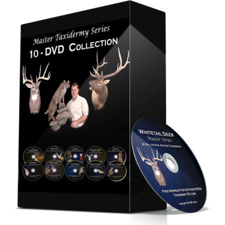 how to learn taxidermy school course